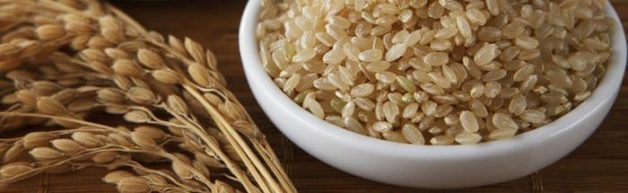 発芽玄米 効果 糖尿病 糖質制限